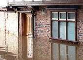 Flood Restoration San Diego